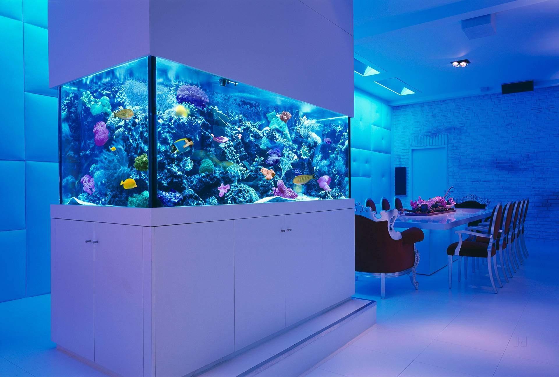 Akvárium sa môže stať skvostom vášho bývania