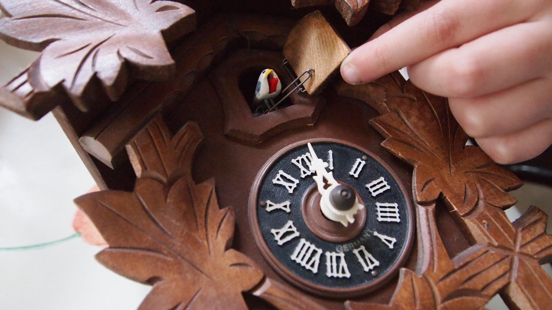 kukuckove hodiny v domacnosti