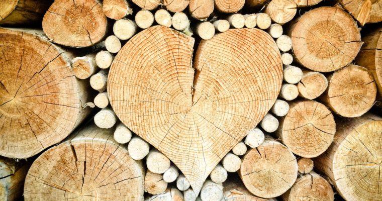Kúzlo s vôňou dreva