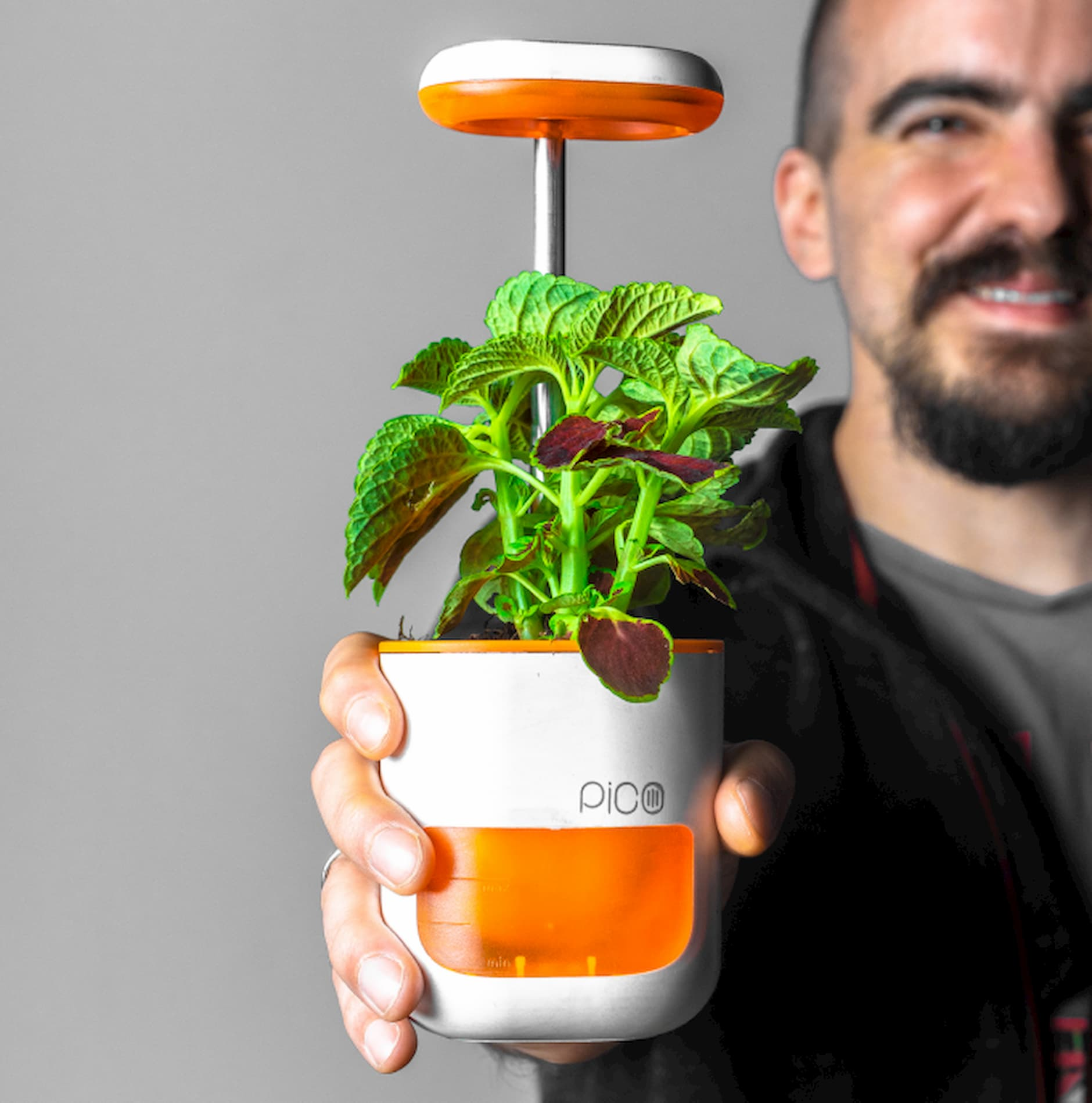 PICO: Zahrada na dlani. Zábavné pěstování rostlin, které zvládne každý