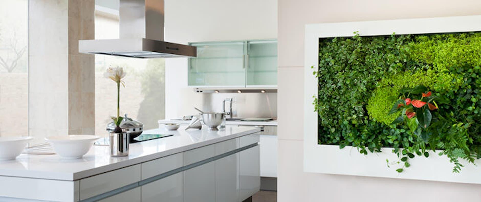 Oživte svoju stenu obrazom z rastlín, ktorému neodoláte