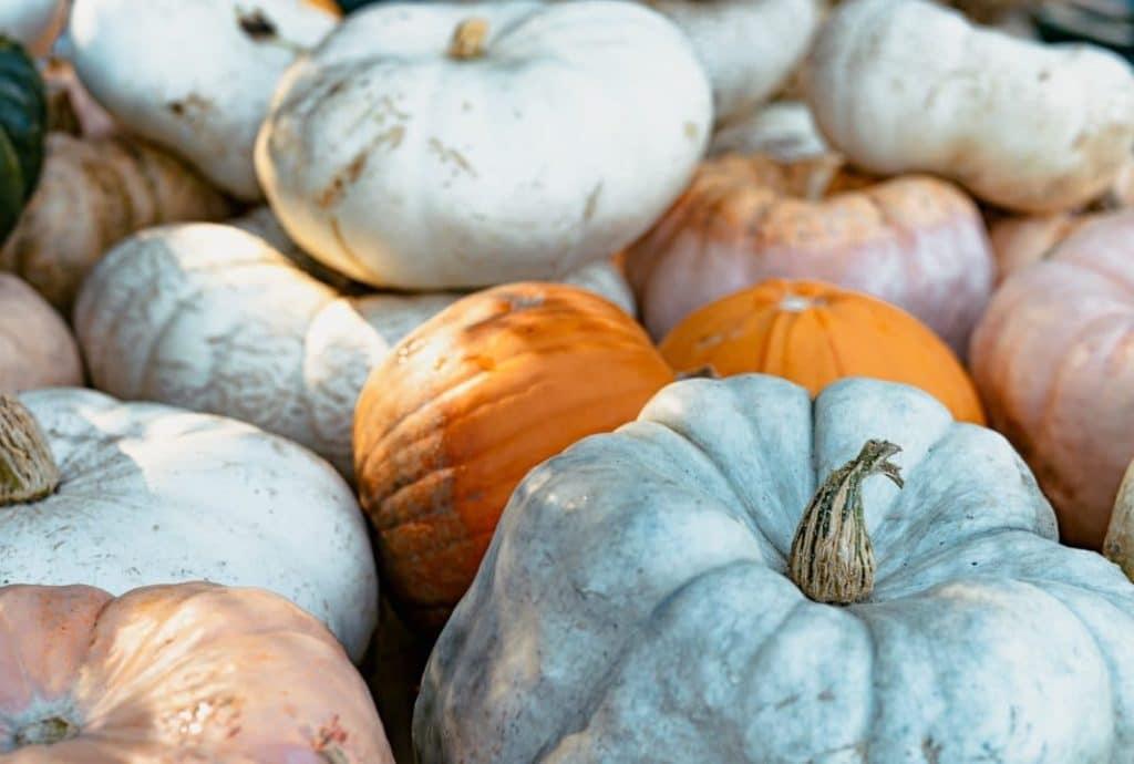 tekvice-ako-jesenna-dekoracia