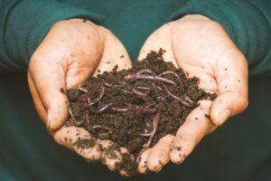 kompost-z-domacej-cisticky-odpadovych-vod