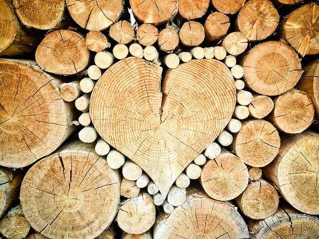 drevo a jeho vyuzitie v interieri
